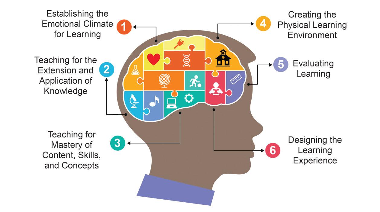 Brain-Targeted Teaching Model