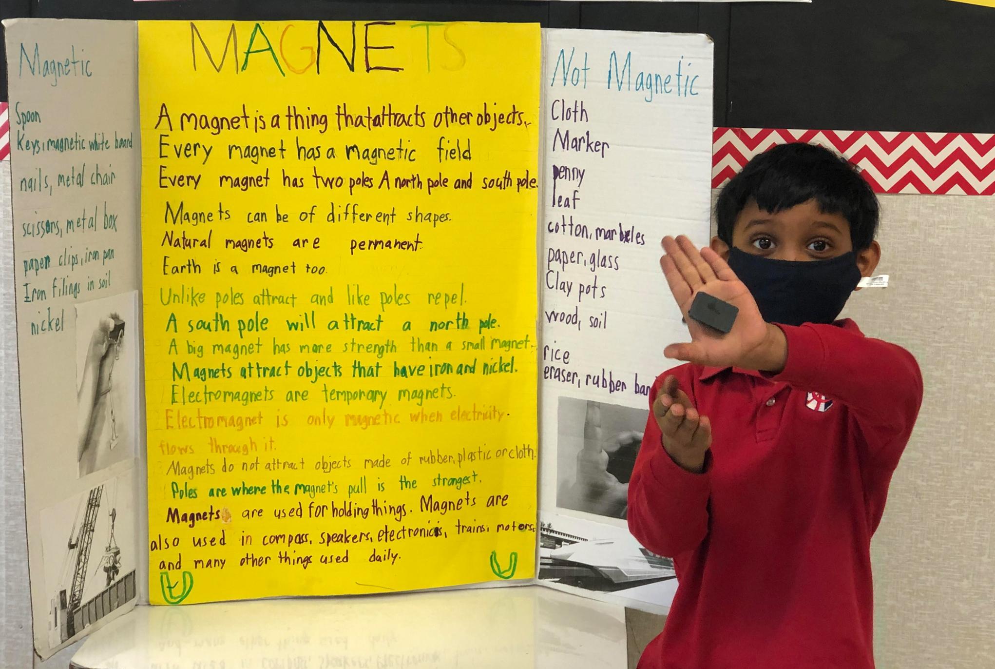 Grade 1 Science Fair