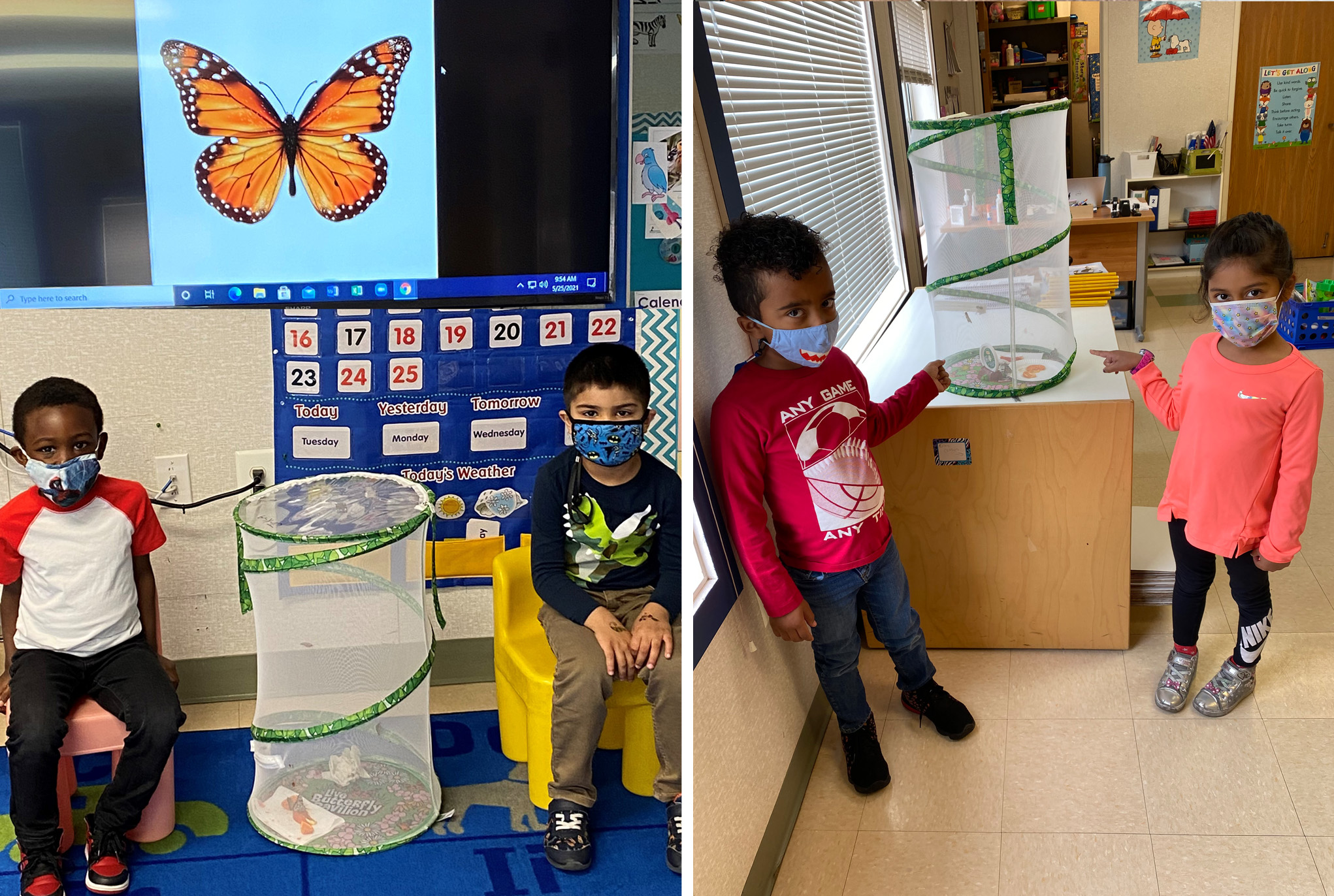 Pre-Kindergarten Butterflies